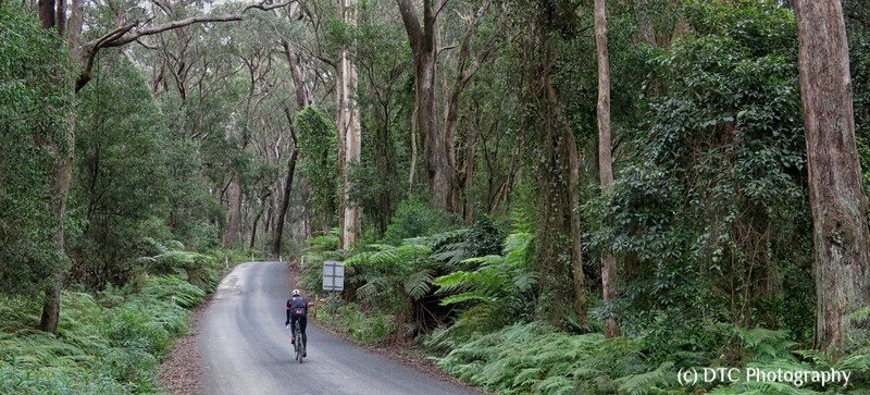 Riding in the beautiful Southern Tablelands, Team Rapha