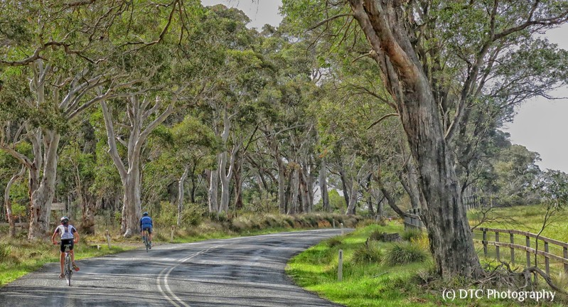 Highland Roads, the Bowral Classic