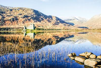 Celeimages Scottish Wildlife_-7.jpg