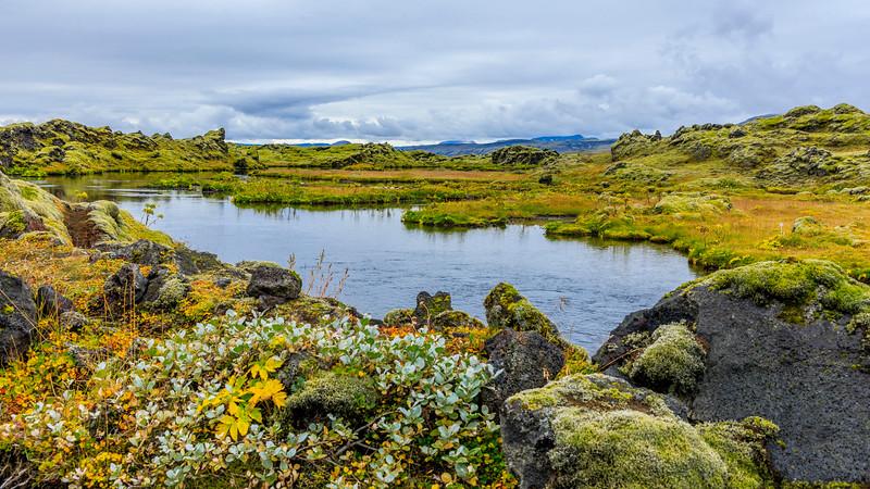 ICELAND-Highlands-Vatnajökull National Park-Higlands Oasis