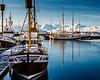 ICELAND-Húsavík-harbor