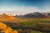 Iceland-Westfjords-Thingeyri