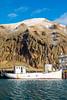 Iceland-Vestmannaeyjar-Heimaey-Harbor