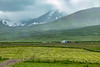 Iceland-Borgarfjörður Eystri-Farm