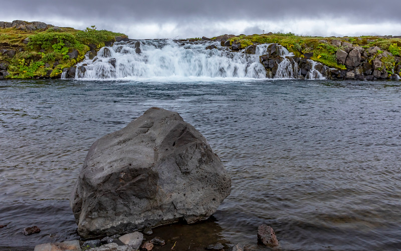 Iceland-Grafarlandaá river-Grafarlandafoss-Angelica [Wild celery]