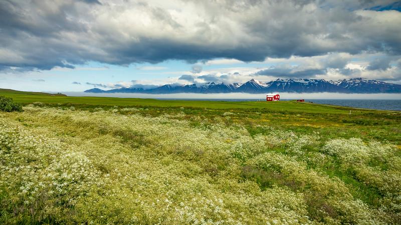 Iceland- Dalvík-Eyjafjörður