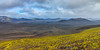ICELAND-HIGHLANDS-Frostastaðavatn-[ROUTE F208]