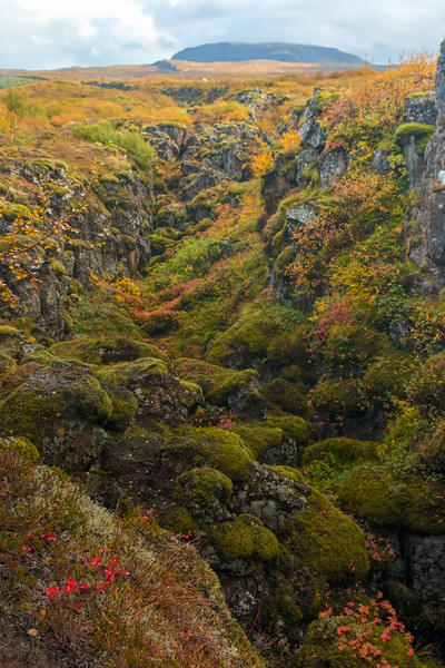 Iceland-Thingvellir National Park-Mid-Atlantic Ridge