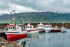Iceland-Höfn Borgarfirði Eystri
