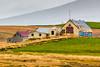 ICELAND-MELASVEIRARVEGUR