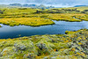ICELAND-Highlands-Vatnajökull National Park-Higlands Oasis