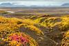 ICELAND-Interior Highlands