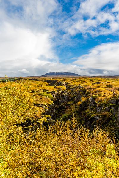 Iceland-Thingvellir National Park-Mid-Atlantic Ridge