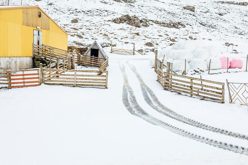 Iceland-Berufjörður-Lindarbrekka farm