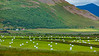 Iceland-Grenivik