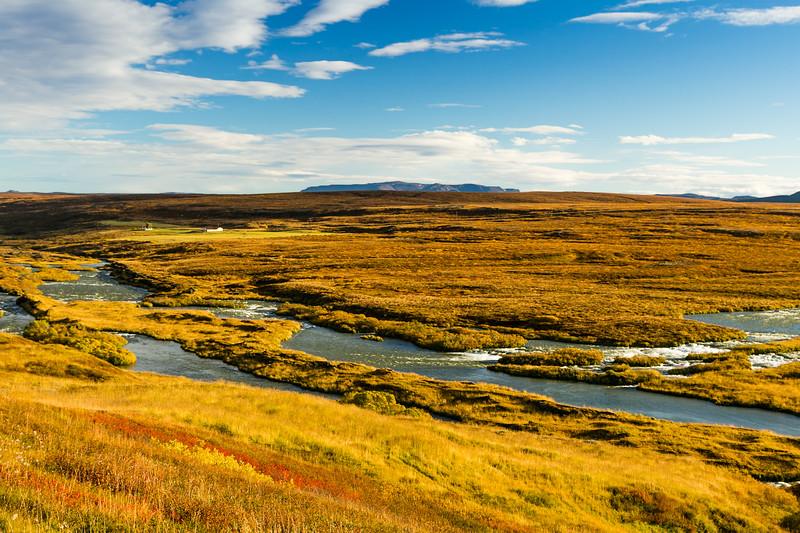 ICELAND-Hofsstaðir [FARM]
