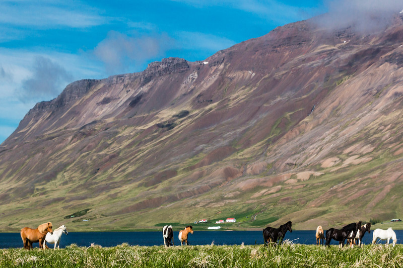 Iceland-Breidbolsstadur