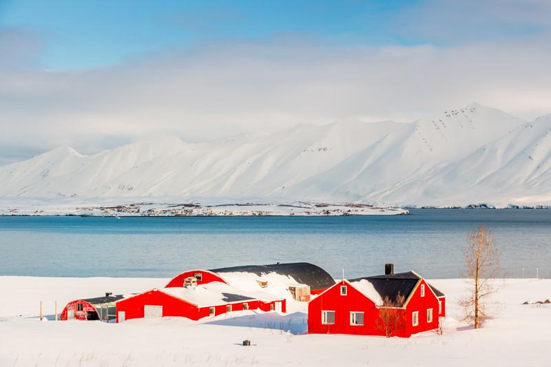 ICELAND-Árskógssandur