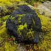 ICELAND-Highlands-Vatnajökull National Park-Higlands Oasis-Lava rock