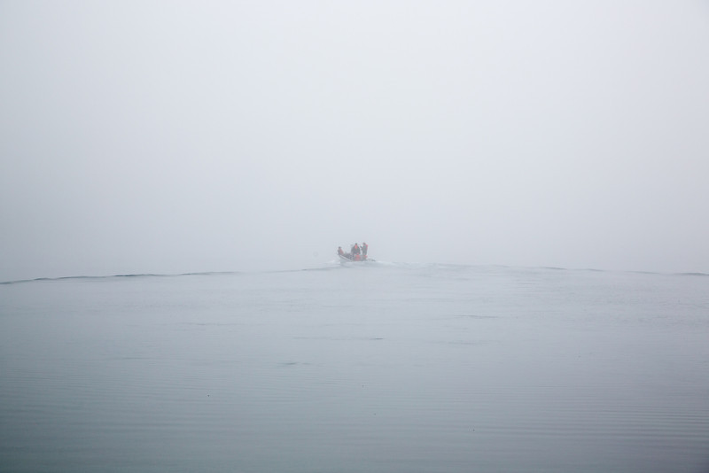 August 4th Into the Fog