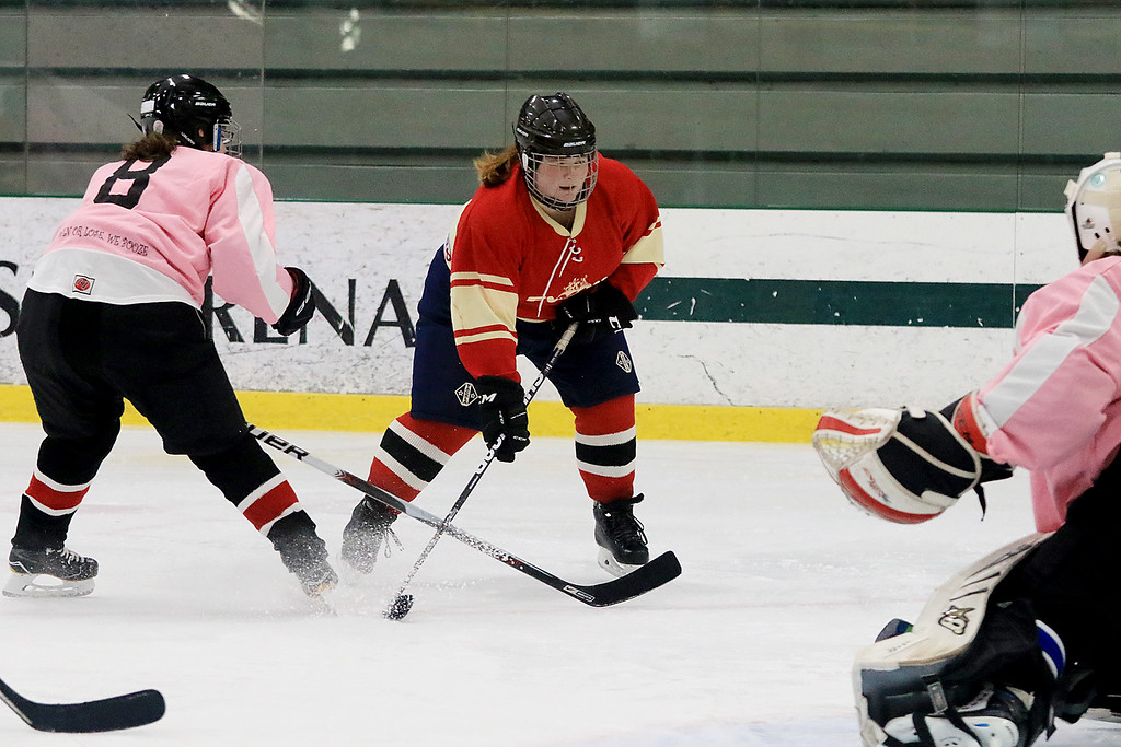 . The Have a Heart St. Valentine\'s Day Hockey Tournament is being held on February 8th to 10th 2019 at Fitchburg State University\'s Wallace Civic Center. One of the games on Friday afternoon was between the Fitchburg Women\'s Hockey League and the Nips & Suds. Nips\' Erika Epstein tries to stop FWHL\'s Chelsea Carr\'s shot on goal. SENTINEL & ENTERPRISE/JOHN LOVE