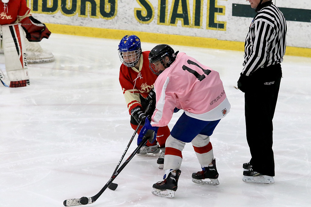 . The Have a Heart St. Valentine\'s Day Hockey Tournament is being held on February 8th to 10th 2019 at Fitchburg State University\'s Wallace Civic Center. One of the games on Friday afternoon was between the Fitchburg Women\'s Hockey League and the Nips & Suds. Nips\' Kellie Peters and FWHL\'s Sarah Lish fight for control of the puck. SENTINEL & ENTERPRISE/JOHN LOVE