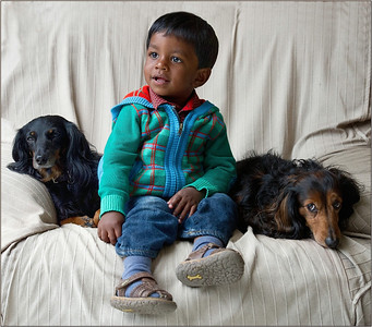 The kids and our dogs