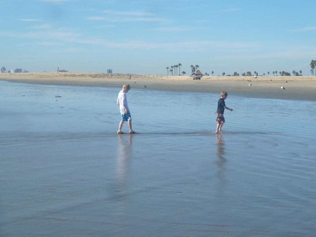 Elliott and Ferris in the ocean