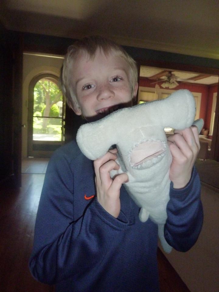 Elliott and shark