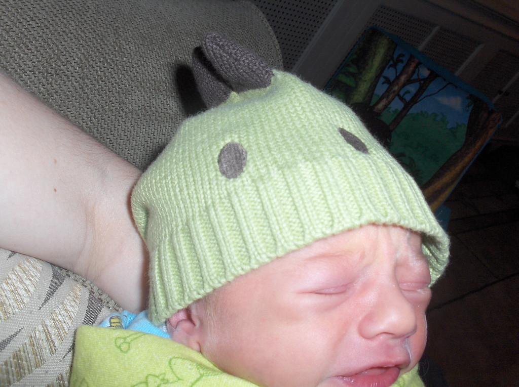 Ferris' Dino hat