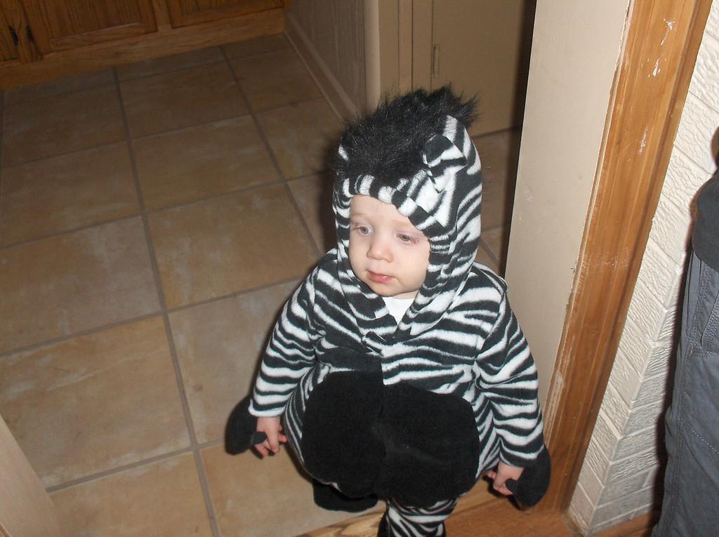 Elliott in zebra costume
