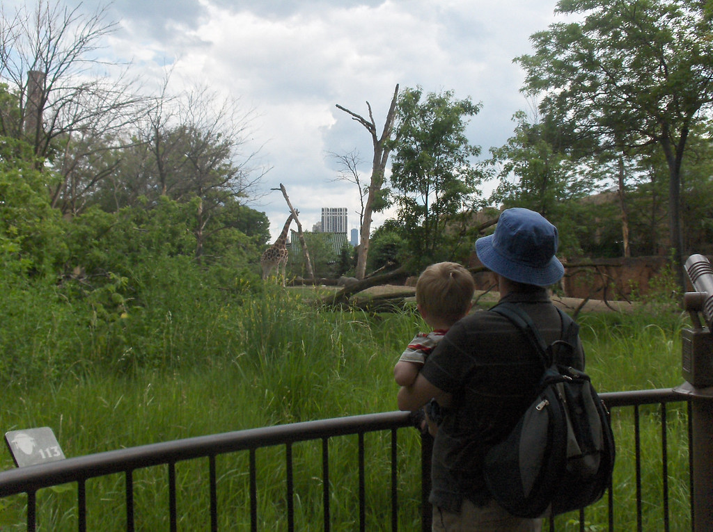 Elliott and Joshua Swenson looking at the giraffes at the Lincoln Park zoo in Chicago.  June 2008