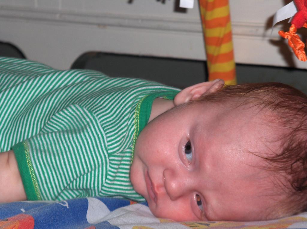 Soren Swenson.  July 2008