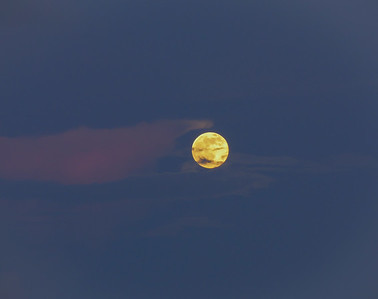 july moonrise