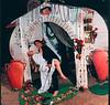 POL and Newlyweds,   Santa Barbara