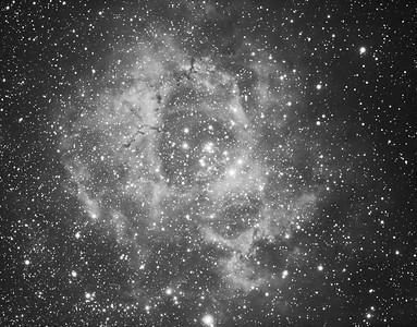 First short sub image 2117 x 5s Rosette Neb