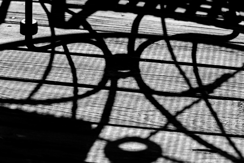Curves and lines in shadow