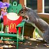 McDonalds in nature