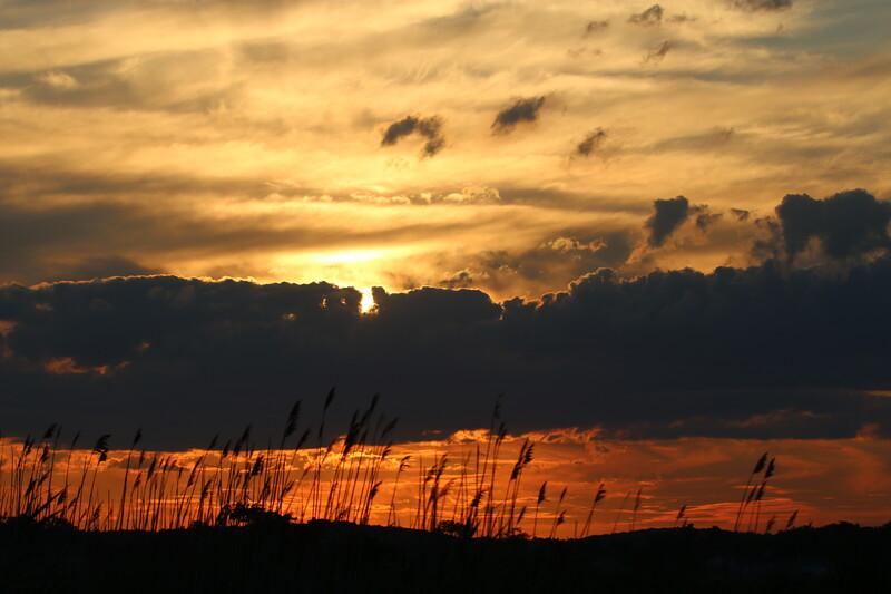 Grass Island Sunset