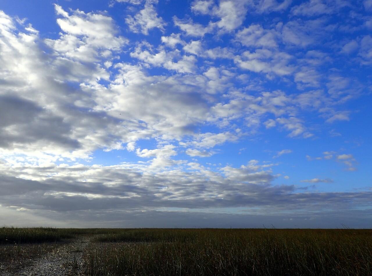 Sunset - Florida Everglades 1/14/17