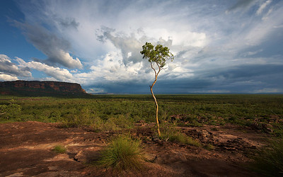 Northern and Central Australia