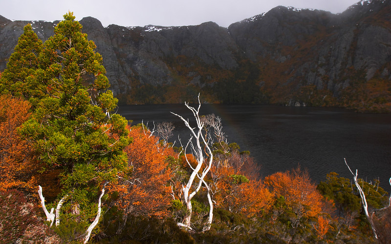 Crater Lake, Cradle Mountain National Park