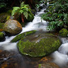 Badger Creek, Dandenongs