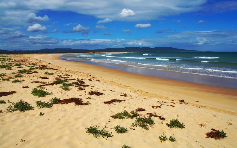 Sandy Point beach, Victoria