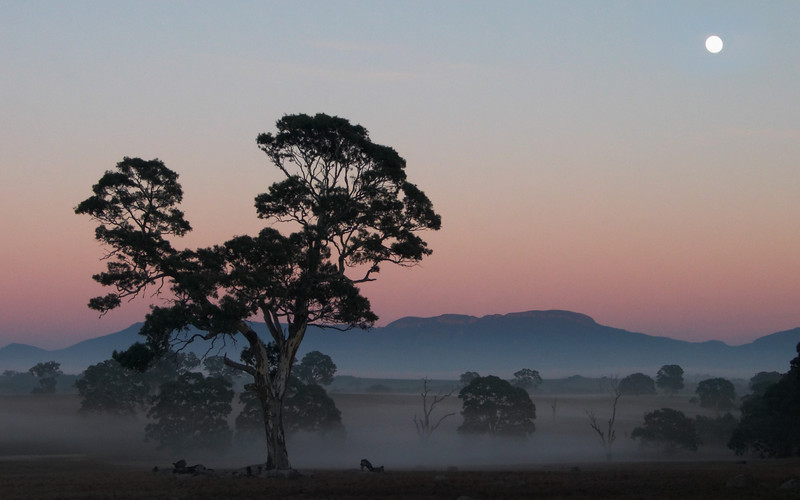Moyston sunrise, looking toward the Grampians.