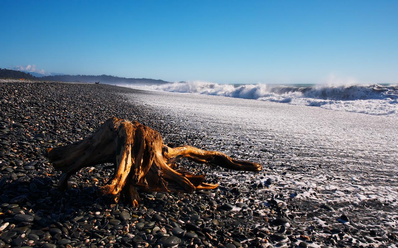 Driftwood, West Coast near Fox Glacier