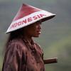 Tea plantation worker - 1