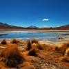 The Altiplano, Bolivia