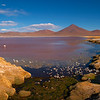 Laguna Colorado, Altiplano, Bolivia