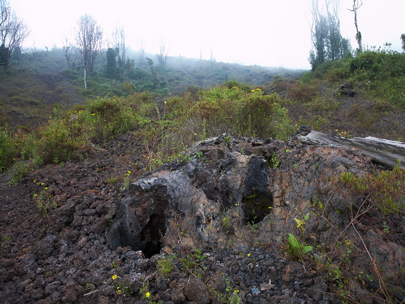 Tree hole in the lava flow.  The Nyiragongo lava is so fluid that it flowed around the trees, which then burnt and left these holes.